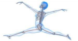 calcium-osteoporosis